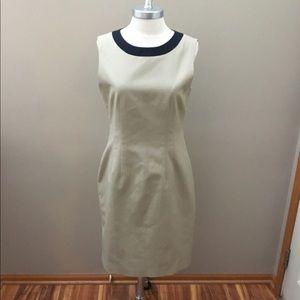 Tahari Tan/Black Dress